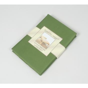000252-iguanagreen.jpg